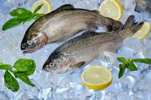 10 главных ошибок при покупке морепродуктов
